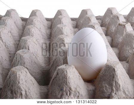 White chicken eggs in a carton box