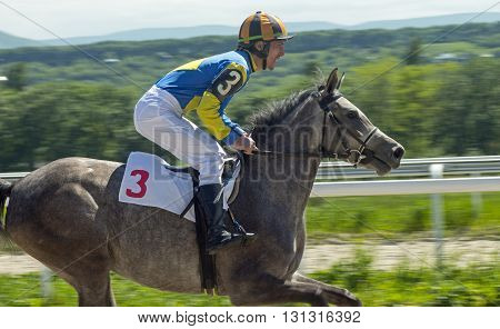 Horse racing for the prize Melekusha in Pyatigorsk,Northern Caucasus,Russia.