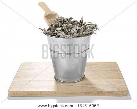 Dried Sage Tea Plant in Bucket