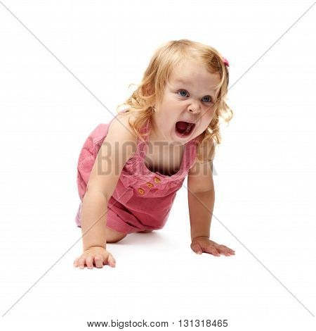 Young little girl with curly hair in pink dress crawling over isolated white background