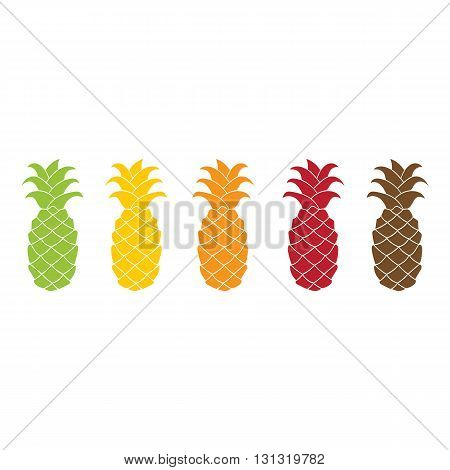 Pineapple icon set colorful flat design isolated on white background. Vector illustration. Green, yellow, orange, red, brawn silhouette.