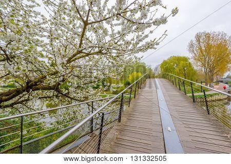 Beautiful bridge in Park Saint Pierre, Amiens, Paris, France.