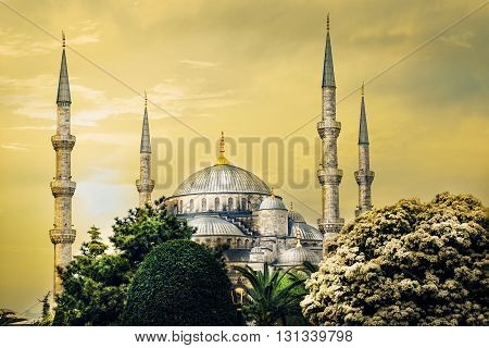 Spiers and domes of Sultanahmet Mosque in tinted yellow.