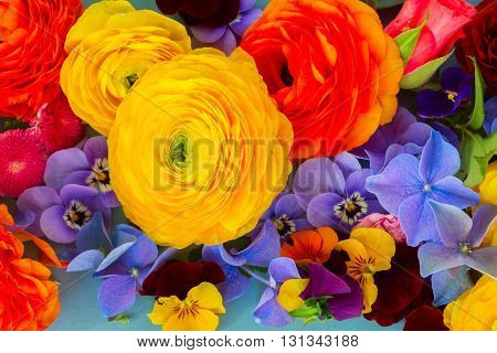 Fresh Flowers Background - ranunculus, pansies and hortensia