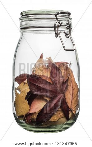 Strange herbarium in a jar. Glass jar with fallen leaves isolated on white bacground.