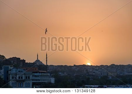 One of the most beautiful things about Istanbul is its unique skyline. Minarets still crown the city skies.The grandeur of the Byzantine Empire is still in the atmosphere.