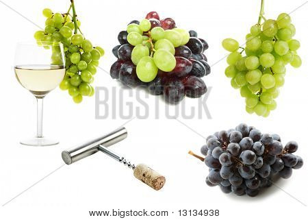High quality collection of vine and grapes on white background