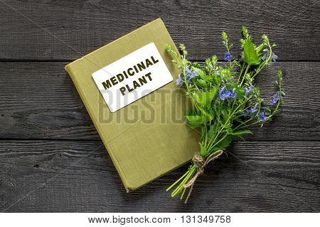 Medicinal plant Veronica Chamaedrys and herbalist handbook on the old wooden table