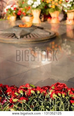 Red carnations against a background of eternal fire