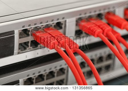 Red Ethernet cables connected to network switch, close up