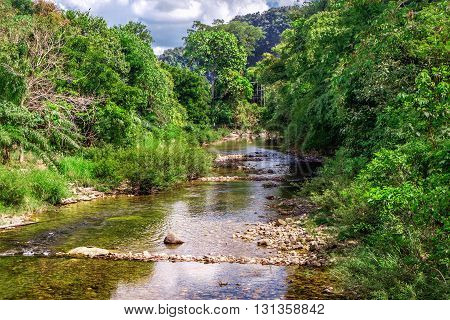Mountain river flowing through the green forest Khao Sok National Park Surat Thani Province Thailand.