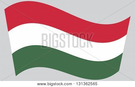 Flag of Hungary waving on gray background