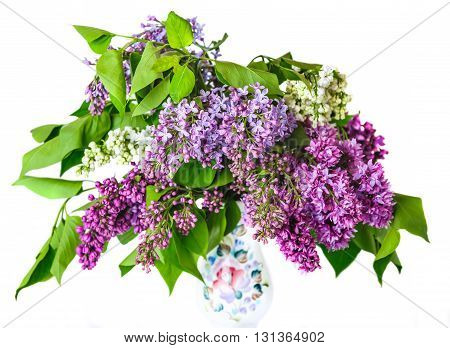 Bouquet of lilac in a porcelain vase isolated on white background