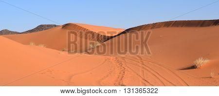Ridge line in the sand, Merzouga Morocco