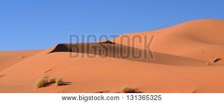 Shadows on the Sand, the Dunes of the Sahara, Merzouga Morocco