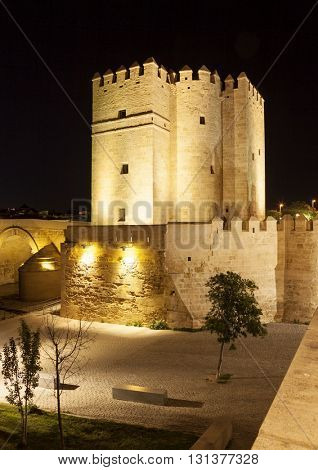 Night shot of fortified tower at the famous Roman Bridge, Cordoba, Spain
