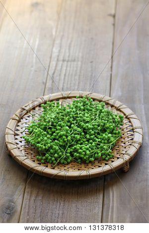 fresh green sansho japanese pepper