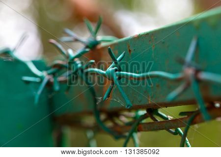 Barbed wire on the top part of a fence. A fence frame from an iron profile the fence and a wire are painted green color. Close up small depth of sharpness