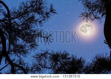 Full moon on the night sky. Full Moon. Moon and star. Night sky. Mystic moon.