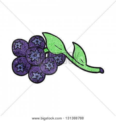 freehand textured cartoon blueberries
