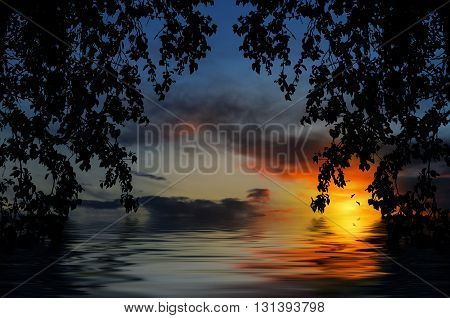 Beautiful sunset over the water in the branches and leaves of trees.