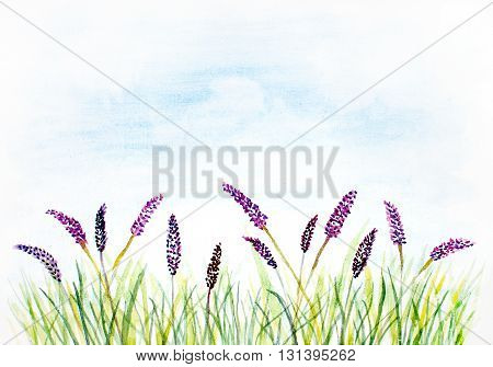watercolor abstract background with grass and violet flowers