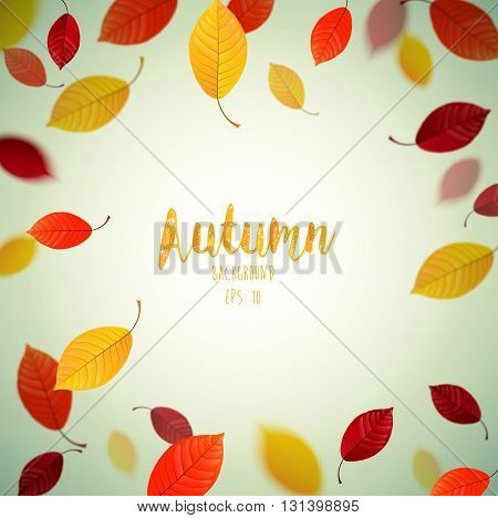 Vector illustration of Flying autumn beech leaves background
