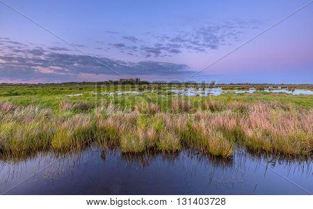 Wetland Zuidlaardermeer