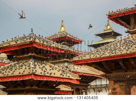 Pigeons on temple roofs at Kathmandu Durbar Square in Nepal.