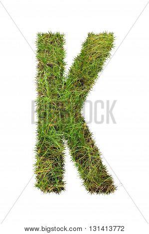 fresh green grass letter on white background - K