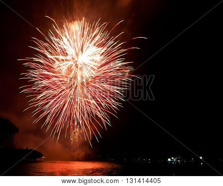 Beautiful  Fireworks As Palm At Night