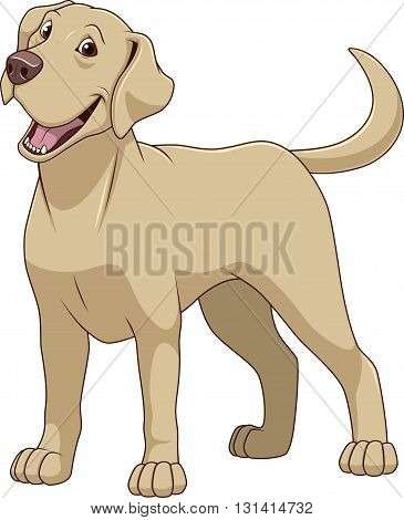Vector illustration funny dog thoroughbred on a white background