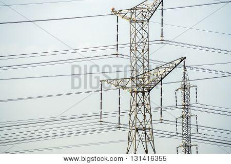 Electricity pylon near Tel Aviv city Israel