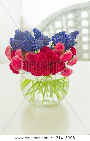 bunch of Muscari and Daisy Flowers on white table