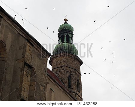 Church tower with a swarm of birds