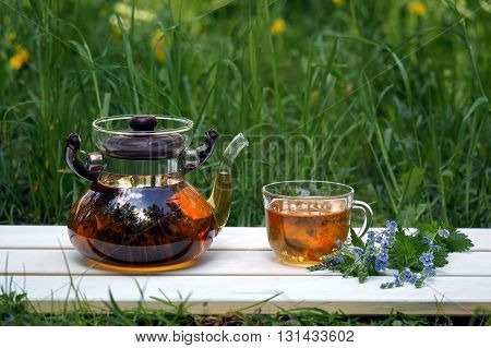 Tea with herbs in nature. Teapot, cup, bouquet of forget-me-flowers on a background of green grass