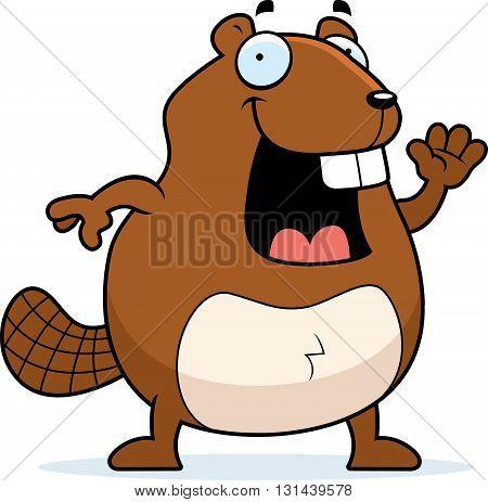 Beaver Waving