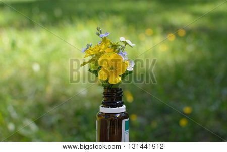 Remedy bottle with herbs and flowers and with spring meadow behind