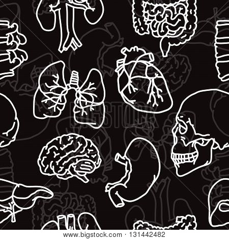 Human organs outline seamless vector black background