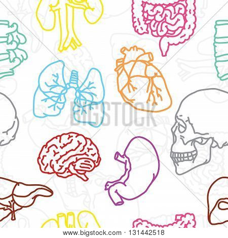 Human outline organs seamless vector white pattern