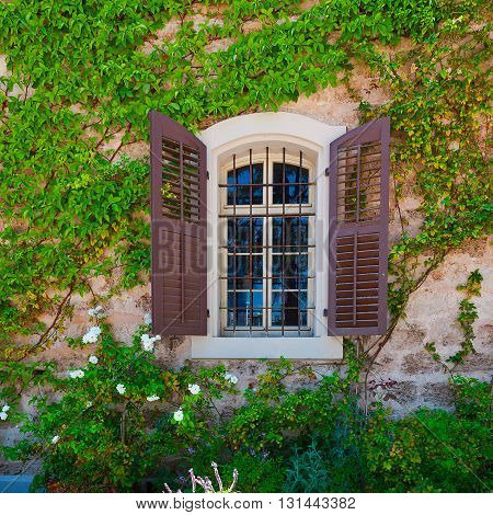 Open Window on the Facade of a Stone House Decorated with Bindweed in Tel Aviv Israel