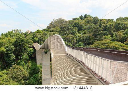 Henderson Waves bridge on Mount Faber rainforest Singapore