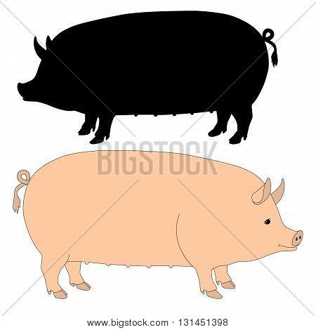 sow pig pink silhouette black vector illustration