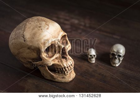 still life photography with human skull on wooden table horror halloween concept