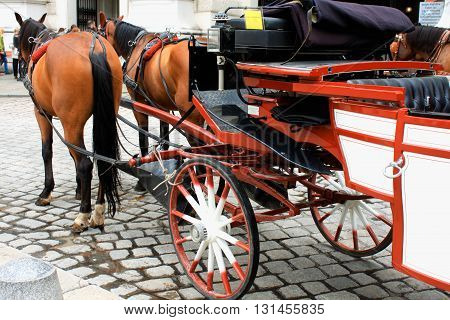 Horse-driven carriage at Hofburg palace Vienna Austria