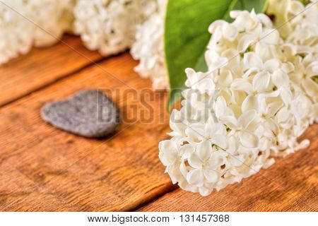 White Lilac Blooms On Wooden Board With Heart Shaped Stone