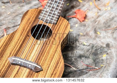 closeup ukulele on wooden table in the garden with copy space