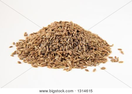 Dill Seeds Macro