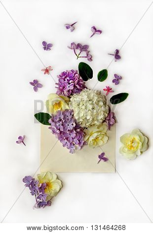spring flowers in old post envelope on white background. Flat lay top view. Nature concept.