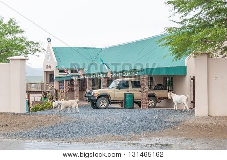 JANSENVILLE SOUTH AFRICA - MARCH 7 2016: Goats walk past a road stall in Jansenville a small town in the heart of the mohair industry of the Eastern Cape Karoo region. Falling rain is visible